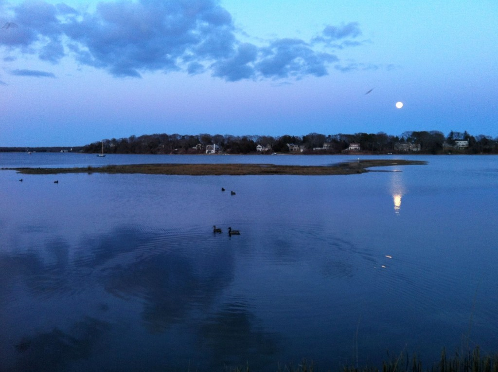 The moon rises over the lagoon in Vineyard Haven on Martha's Vineyard